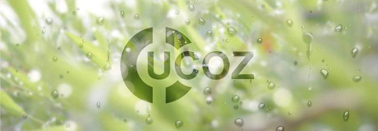 Почему не стоит делать сайты на uCoz?
