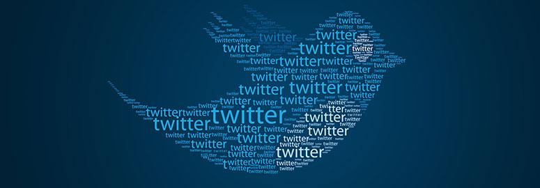 Раскрутить сайт с помощью твиттера